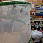 foster.butterflies.nature.learning.classroom